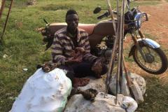 anti-poaching-and-law-enforcement-uganda-wildlife-safaris-61