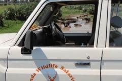 IMG_2629-uganda-wildlife-safaris-aswa-lolim