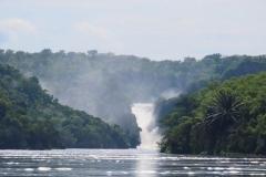 IMG_5718-uganda-wildlife-safaris-aswa-lolim
