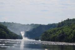 IMG_5726-uganda-wildlife-safaris-aswa-lolim