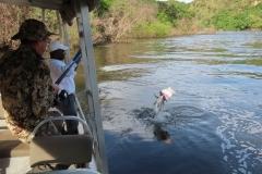 IMG_6595-uganda-wildlife-safaris-aswa-lolim