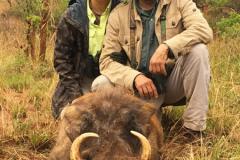 animal-gallery-hunting-season-2018-31