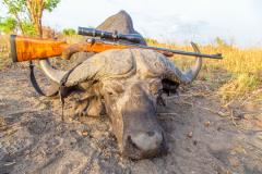 animal-gallery-hunting-season-2018-45