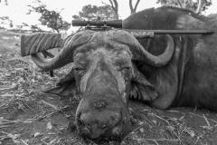 animal-gallery-hunting-season-2018-54