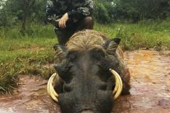 animal-gallery-hunting-season-2018-66