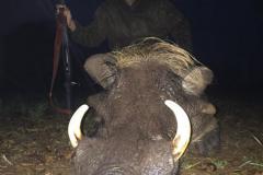animal-gallery-hunting-season-2018-70