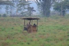 uganda-wildlife-safaris-kafu-river-basin-10