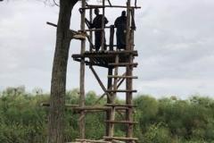 uganda-wildlife-safaris-kafu-river-basin-106