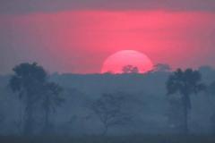 uganda-wildlife-safaris-kafu-river-basin-11