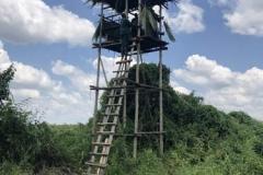 uganda-wildlife-safaris-kafu-river-basin-111