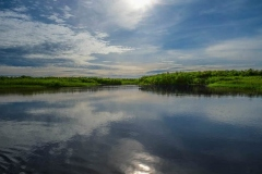 uganda-wildlife-safaris-kafu-river-basin-116