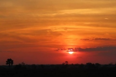 uganda-wildlife-safaris-kafu-river-basin-12