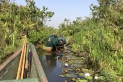 uganda-wildlife-safaris-kafu-river-basin-40