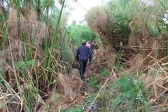 uganda-wildlife-safaris-kafu-river-basin-6