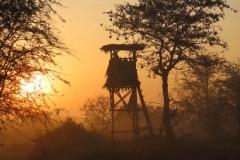 uganda-wildlife-safaris-kafu-river-basin-61