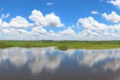 uganda-wildlife-safaris-kafu-river-basin-63
