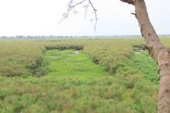 uganda-wildlife-safaris-kafu-river-basin-8