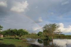uganda-wildlife-safaris-kafu-river-basin-88
