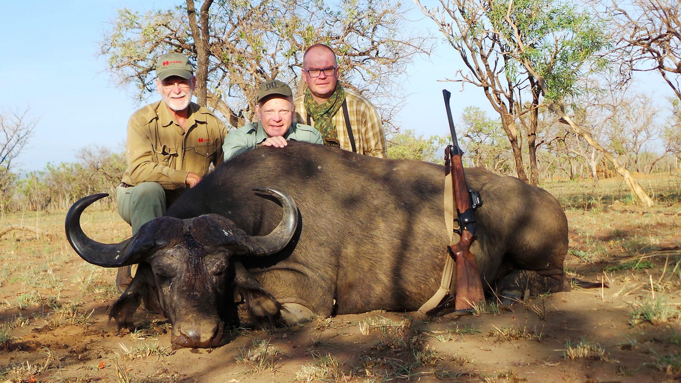 uganda wildlife safaris trophy photos 2017 (2) buffalo