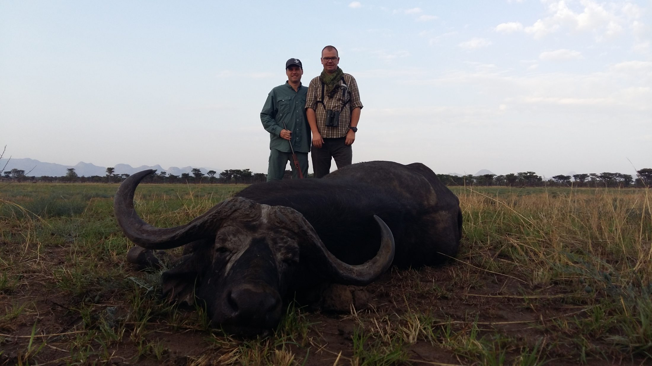 uganda wildlife safaris trophy photos 2017 (43) buffalo