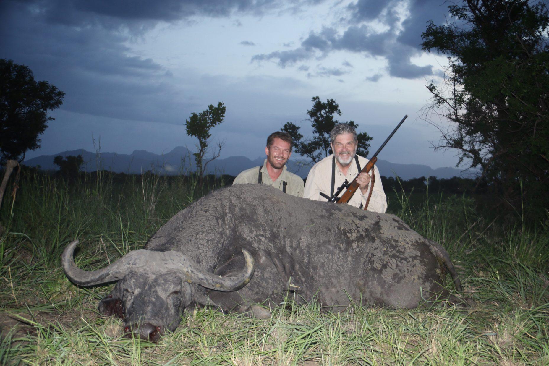 uganda wildlife safaris trophy photos 2017 (47) buffalo