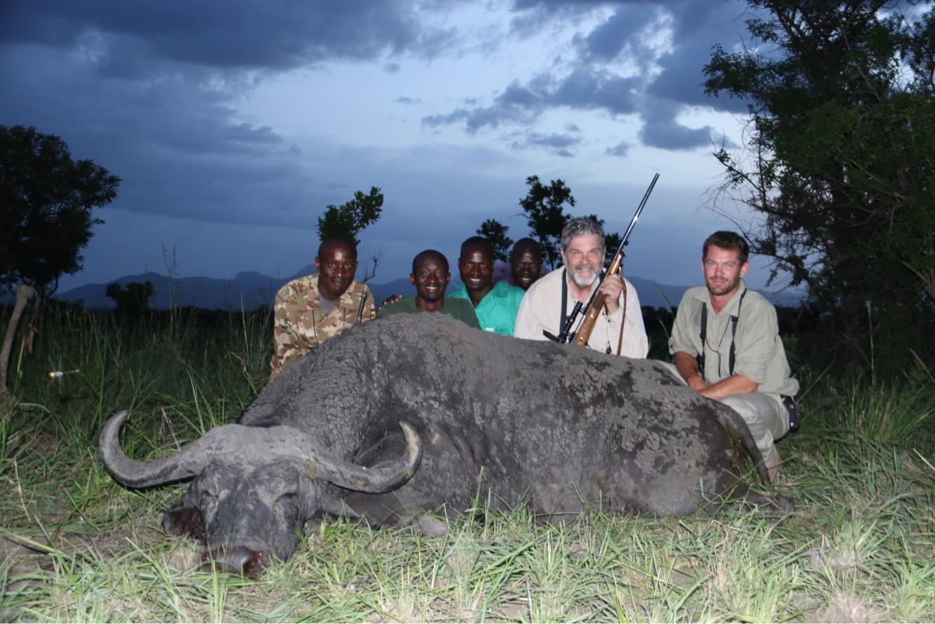 uganda wildlife safaris trophy photos 2017 (48) buffalo